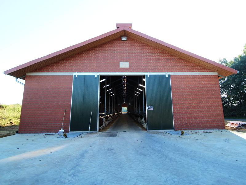 Neubau eines Bullenstalls in Ahaus-Ammeln
